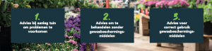 Aanpak Tuinbranche Nederland